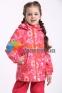 Демисезонный  утепленный комплект для девочки Lassie by Reima 721756R-722724, цвет 3362 1