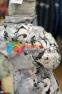 Пальто демисезонное для девочки Huppa LUISA 12430010, цвет 91348 7