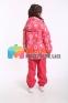 Демисезонный  утепленный комплект для девочки Lassie by Reima 721756R-722724, цвет 3362 4